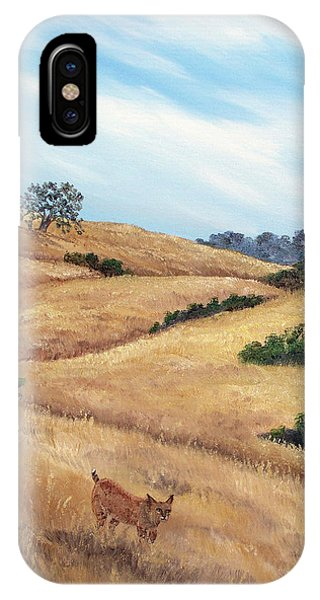 Bobcats iPhone Case - Bobcat At Rancho San Antonio by Laura Iverson