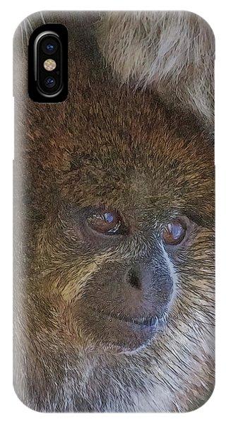 Bolivian Grey Titi Monkey IPhone Case