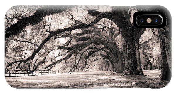 Boone Hall Plantation Live Oaks IPhone Case