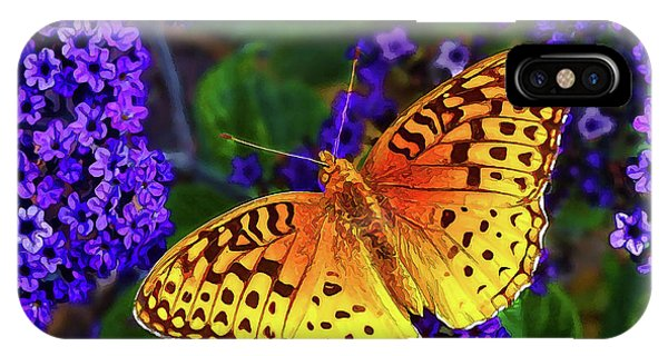 Boothbay Butterfly IPhone Case