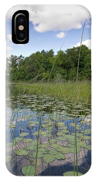 Borden Lake Lily Pads IPhone Case