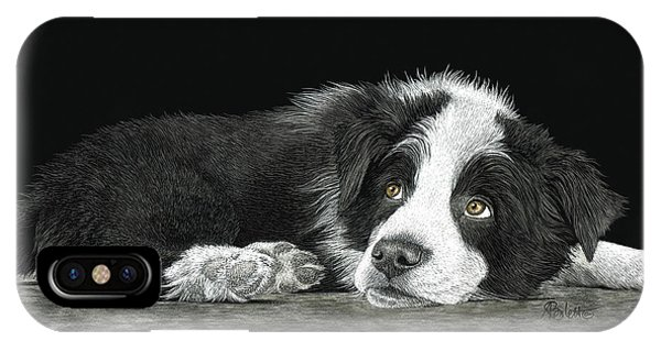 Border Collie Pup For Limited Items IPhone Case