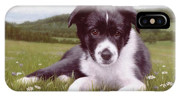 Border Collie Puppy Painting IPhone Case