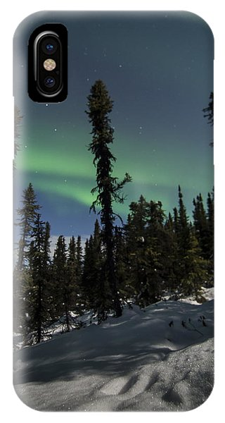 Boreal Forest Essence IPhone Case
