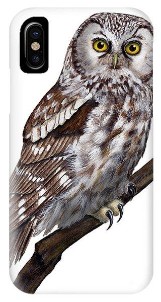 Boreal Owl Tengmalm's Owl Aegolius Funereus - Nyctale De Tengmalm - Paerluggla - Nationalpark Eifel IPhone Case
