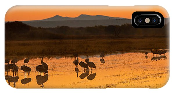 Bosque Sunrise IPhone Case
