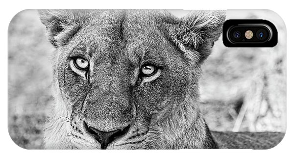 Botswana  Lioness In Black And White IPhone Case