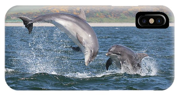 Bottlenose Dolphin - Moray Firth Scotland #49 IPhone Case