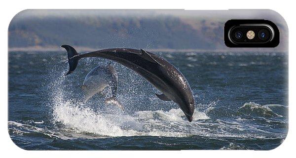 Bottlenose Dolphins - Scotland  #25 IPhone Case
