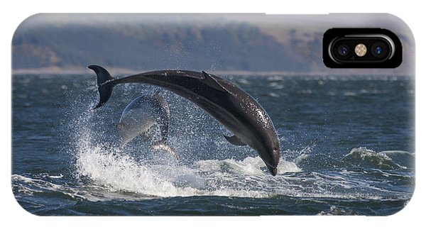 Bottlenose Dolphins - Scotland  #25 IPhone Case