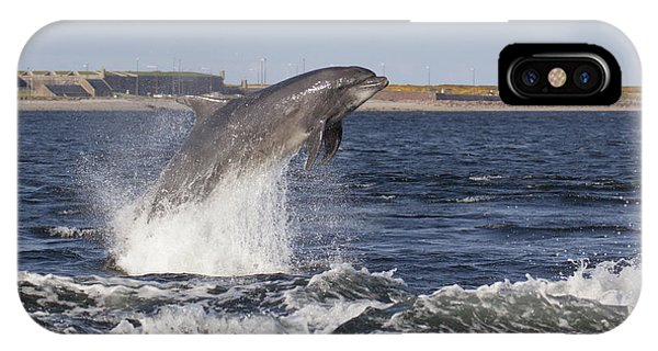 Bottlenose Dolphin - Scotland  #26 IPhone Case