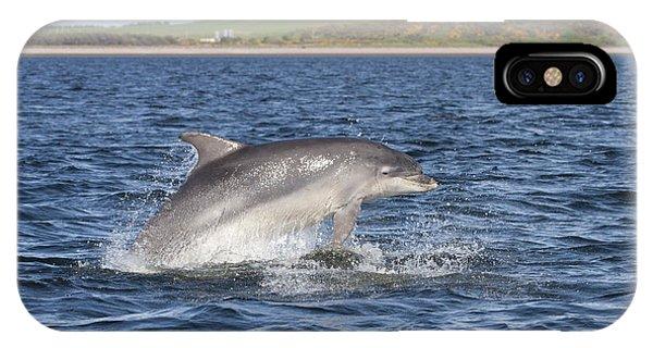 Bottlenose Dolphin - Scotland  #32 IPhone Case