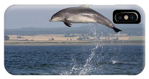 High Jump - Bottlenose Dolphin  - Scotland #42 IPhone Case
