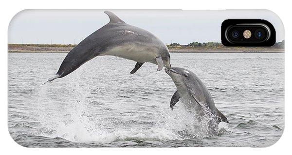 Bottlenose Dolphins - Scotland #1 IPhone Case