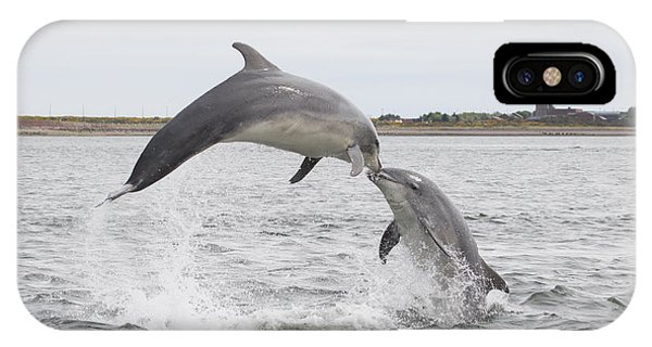 Bottlenose Dolphins - Scotland #1 IPhone Case