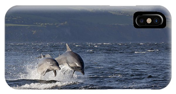 Bottlenose Dolphins Leaping - Scotland  #37 IPhone Case
