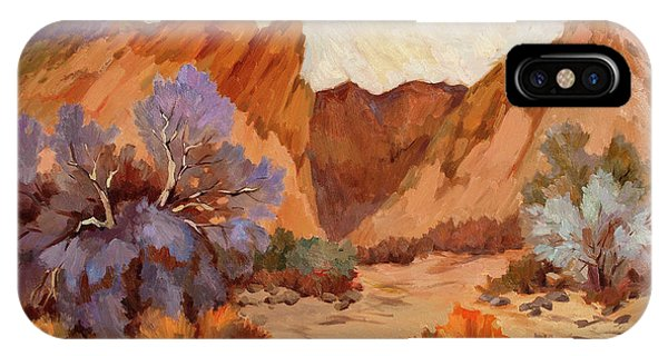 Box Canyon IPhone Case