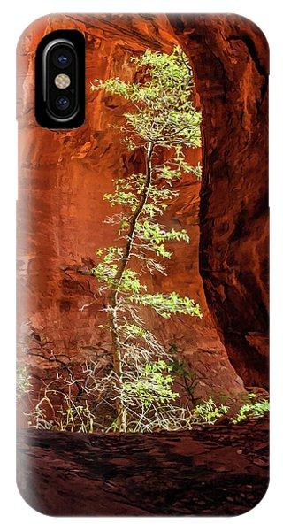 Boynton Canyon 07-034 IPhone Case