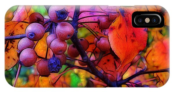 Bradford Pear In Autumn IPhone Case