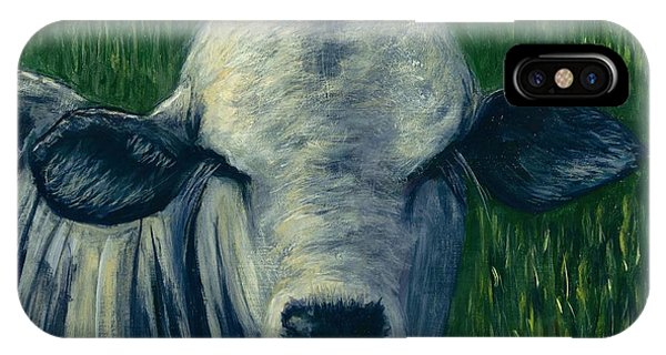 Brahma Bull  IPhone Case
