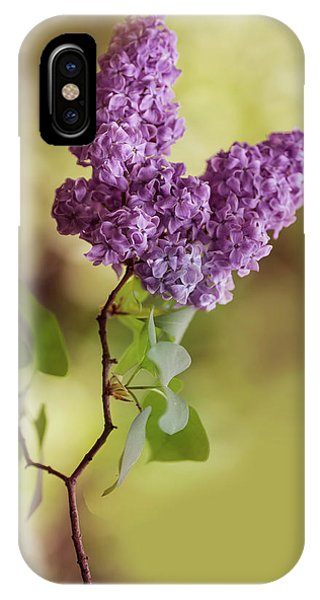 Branch Of Fresh Violet Lilac IPhone Case