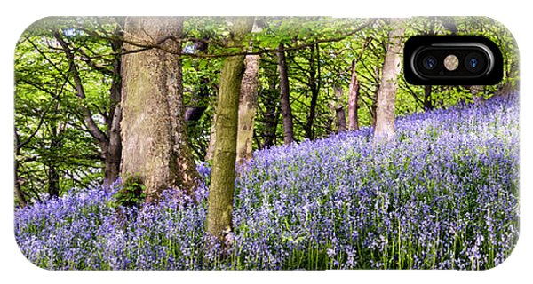 Moor iPhone Case - Bluebell Wood by Janet Burdon