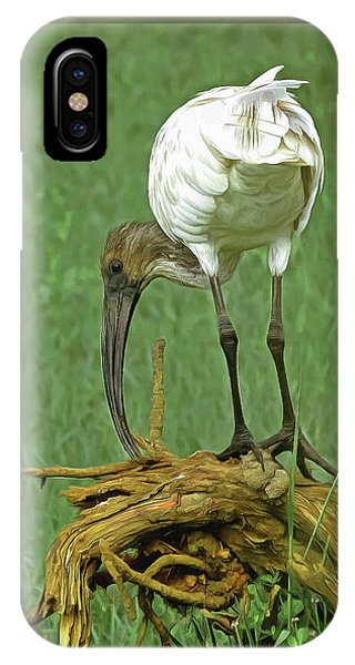 Breakfast With The Ibis IPhone Case