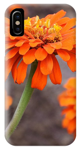 Bright And Beautiful IPhone Case