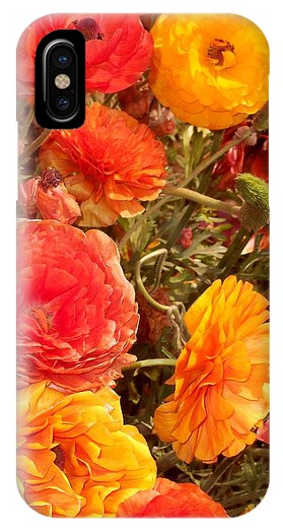 Bright And Sunny Phone Case by Jean Booth