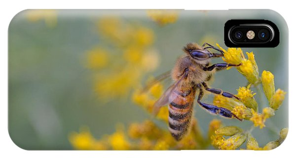 Bright Eyed Bee IPhone Case
