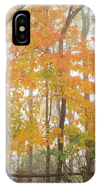 Bright Fall Phone Case by Sallie Woodring