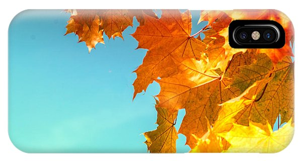 The Lord Of Autumnal Change IPhone Case