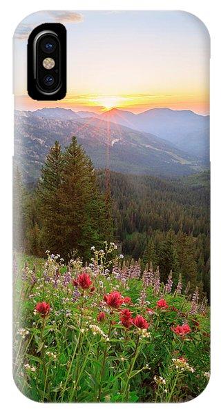Brighton Wildflowers IPhone Case