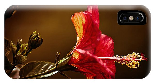 Brilliant Hibiscus IPhone Case