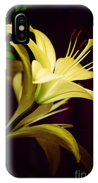 Brilliant Lily IPhone Case