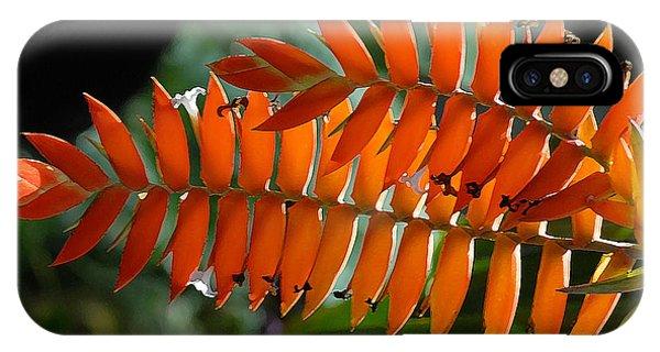 Brilliant Orange Nature IPhone Case