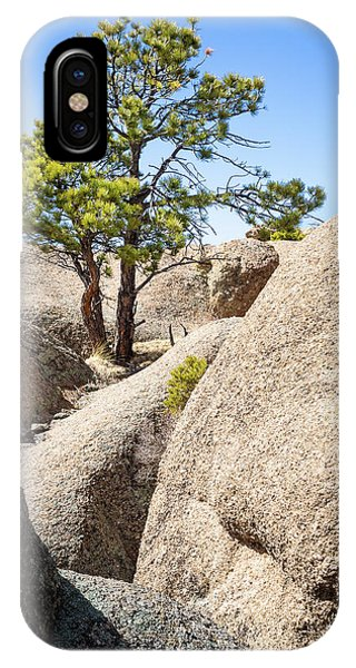 IPhone Case featuring the photograph Bristlecone In Granite 2 by Tim Newton