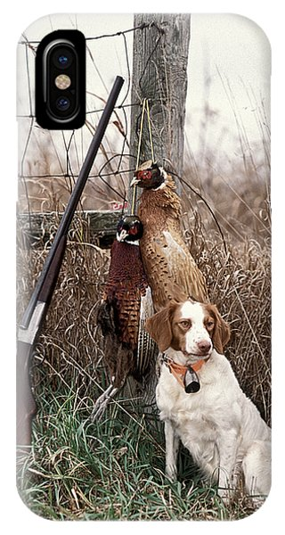Brittany And Pheasants - Fs000757b IPhone Case