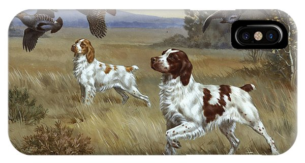 Brittany Spaniels Flush Three Birds IPhone Case