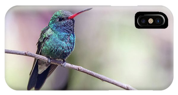 IPhone Case featuring the photograph Broad-billed Hummingbird 2008-031718-1cr by Tam Ryan