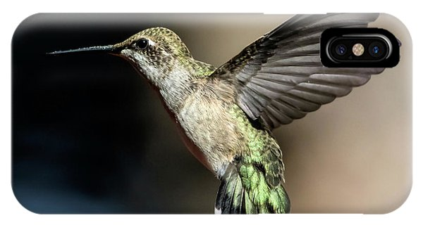 Broad-tailed Hummingbird Female IPhone Case