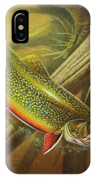 Trout iPhone Case - Brook Trout Cover by JQ Licensing