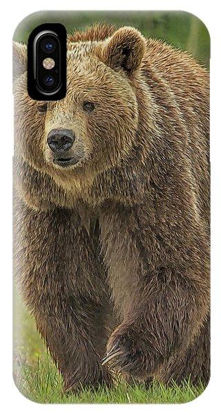 Brown Bear 1 IPhone Case