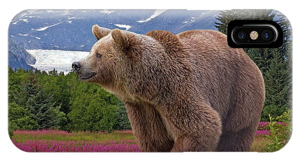 Brown Bear 2 IPhone Case