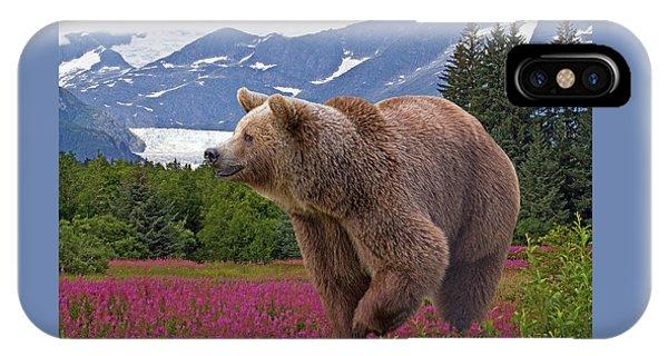 Brown Bear 2 IPhone Case