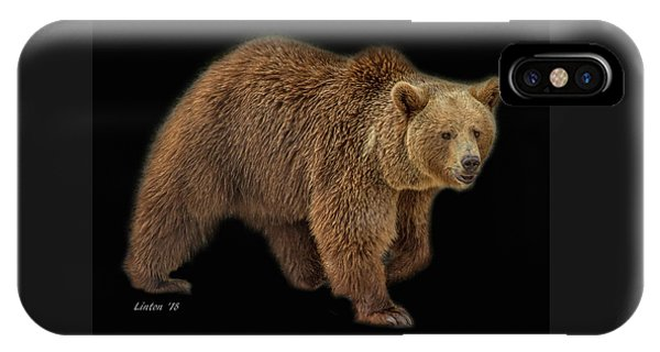 Brown Bear 5 IPhone Case