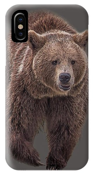 Brown Bear 8   IPhone Case