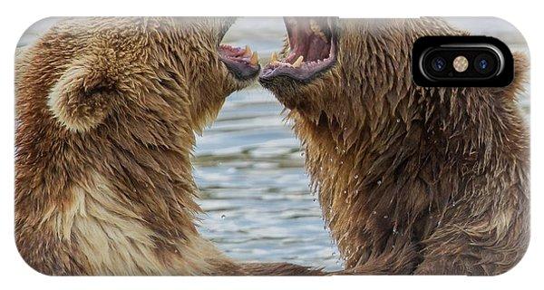 Brown Bears4 IPhone Case