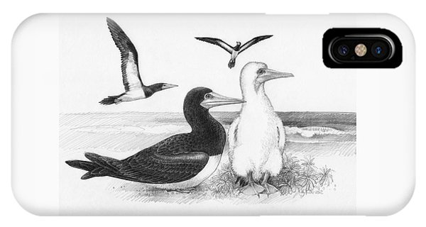 IPhone Case featuring the drawing Brown Boobies by Judith Kunzle