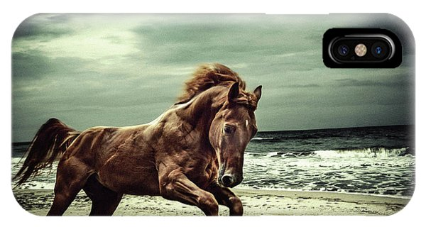 Brown Horse Galloping On The Coastline IPhone Case